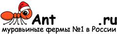 Муравьиные фермы AntFarms.ru - Архангельск